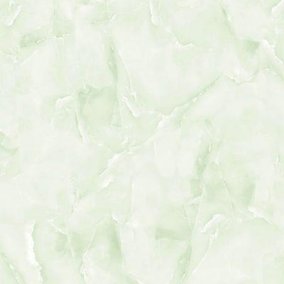 V8011