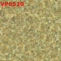 VP6510