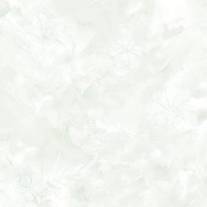 VP6571