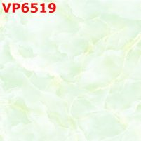 VP6519